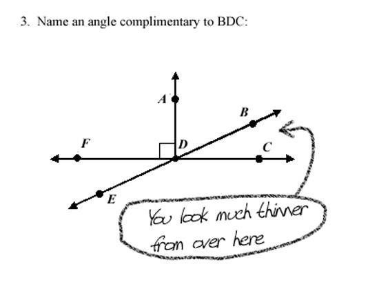Funny Exam Papers from My Modern Met